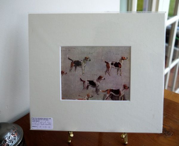 Coloured study of Hounds - H E12 -  Carlow, Ireland  1940's print by Lionel Edwards